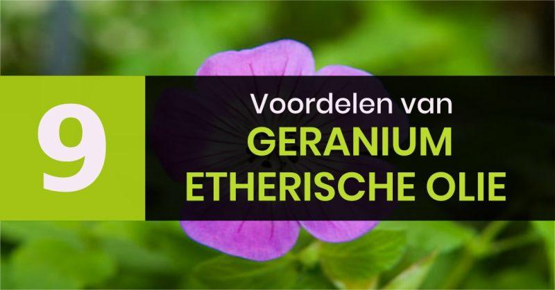 9 voordelen van Geranium olie